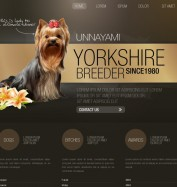 1.0_brown_yorkshire_theme